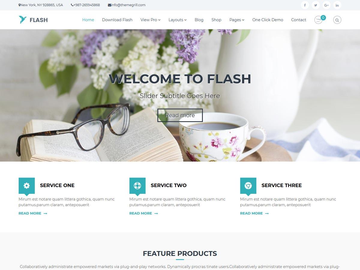 Flash Pro theme