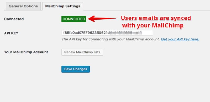 Facebook Spiderlink MailChimp Settings