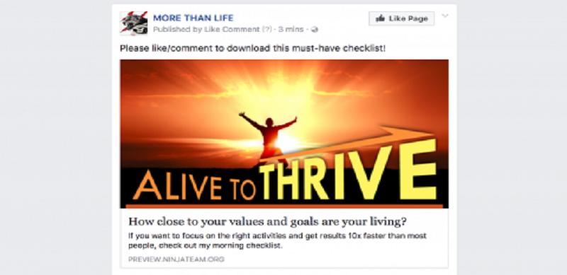 Facebook Spiderlink Visual View