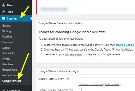 Google Place reviews