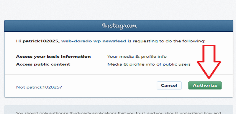 10Web Instagram Feed Authorize Settings