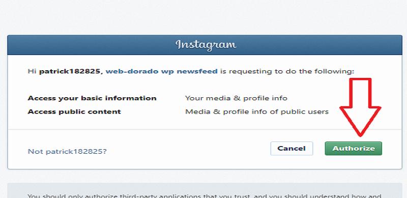 Instagram Widget by WPZOOM Authorize Settings