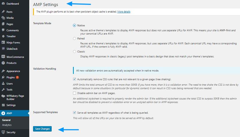 AMP Plugin Settings