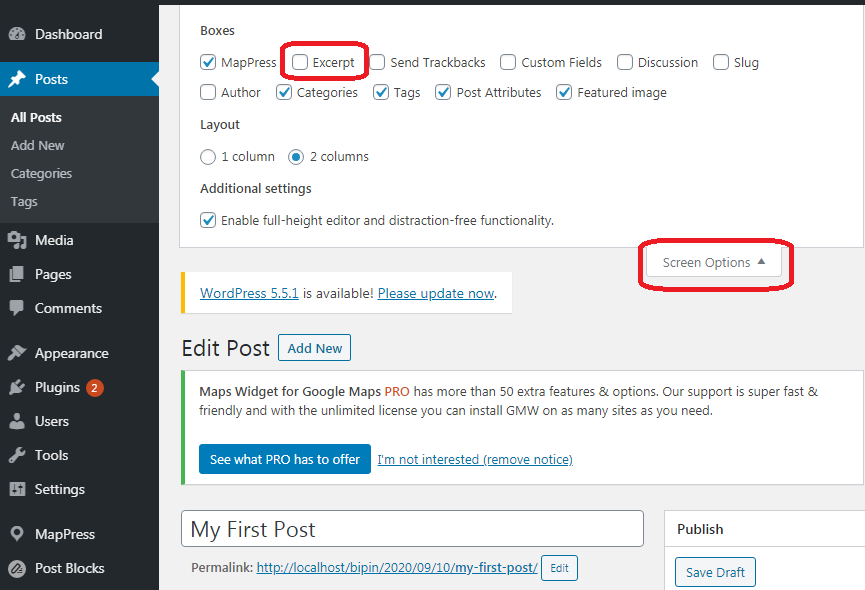 Custom Excerpt in WordPress