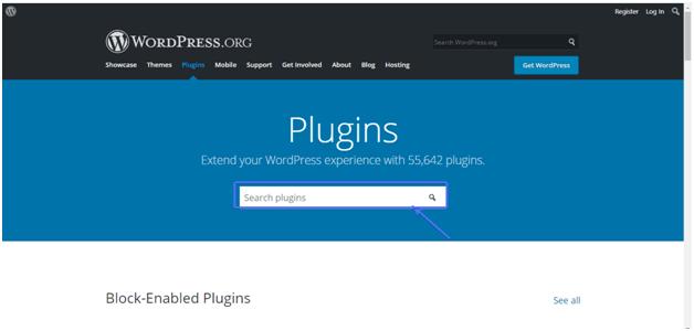 block enabled plugin